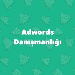 Adwords Danışmanlığı
